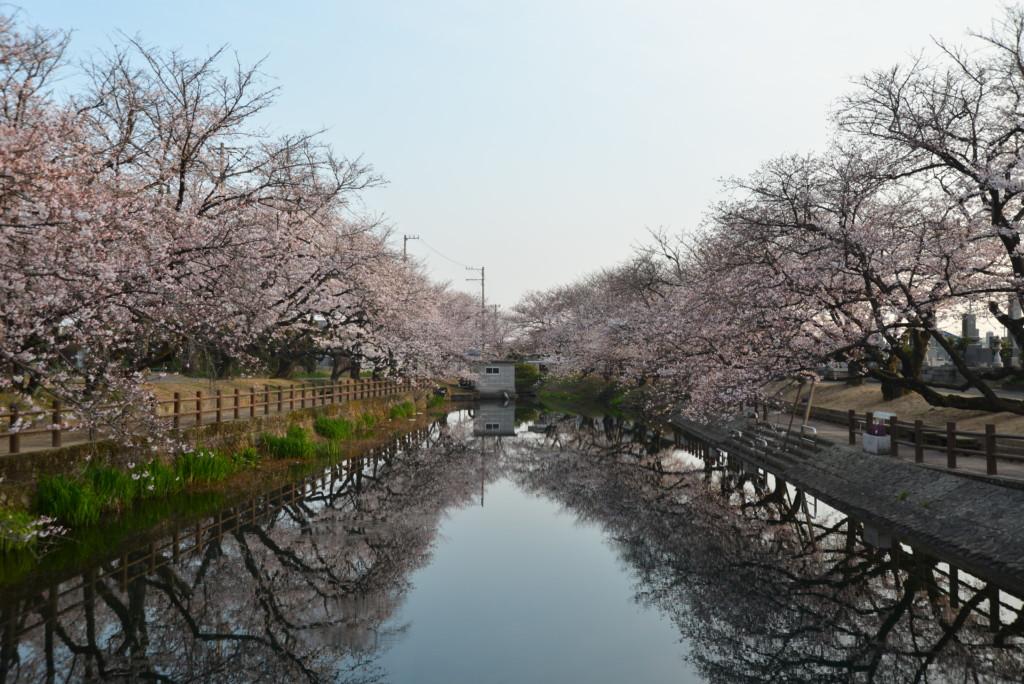 西条市石田のひょうたん池