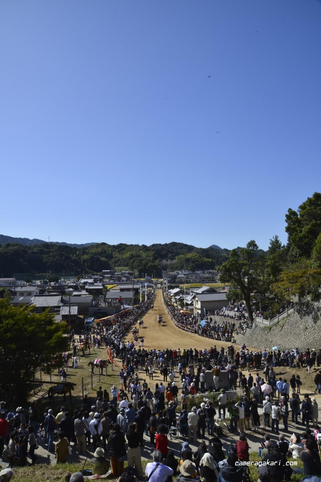 お供馬の走り込み 丘の上から撮影