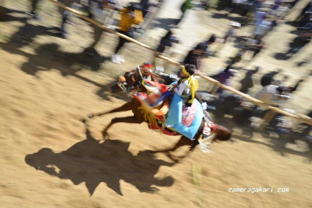 お供馬の走り込み 賀茂神社からの撮影