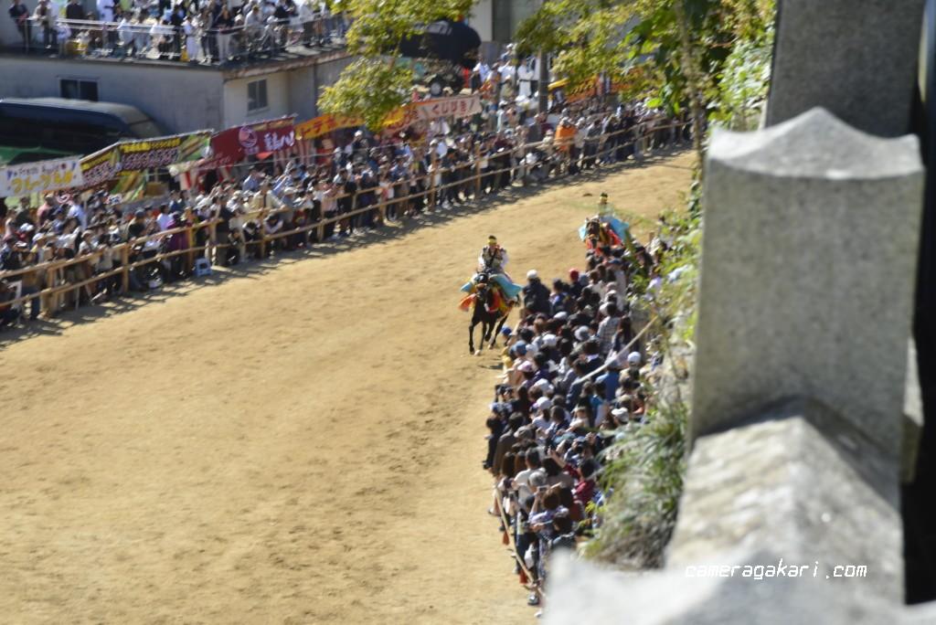 お供馬走り込み 坂の上から撮影