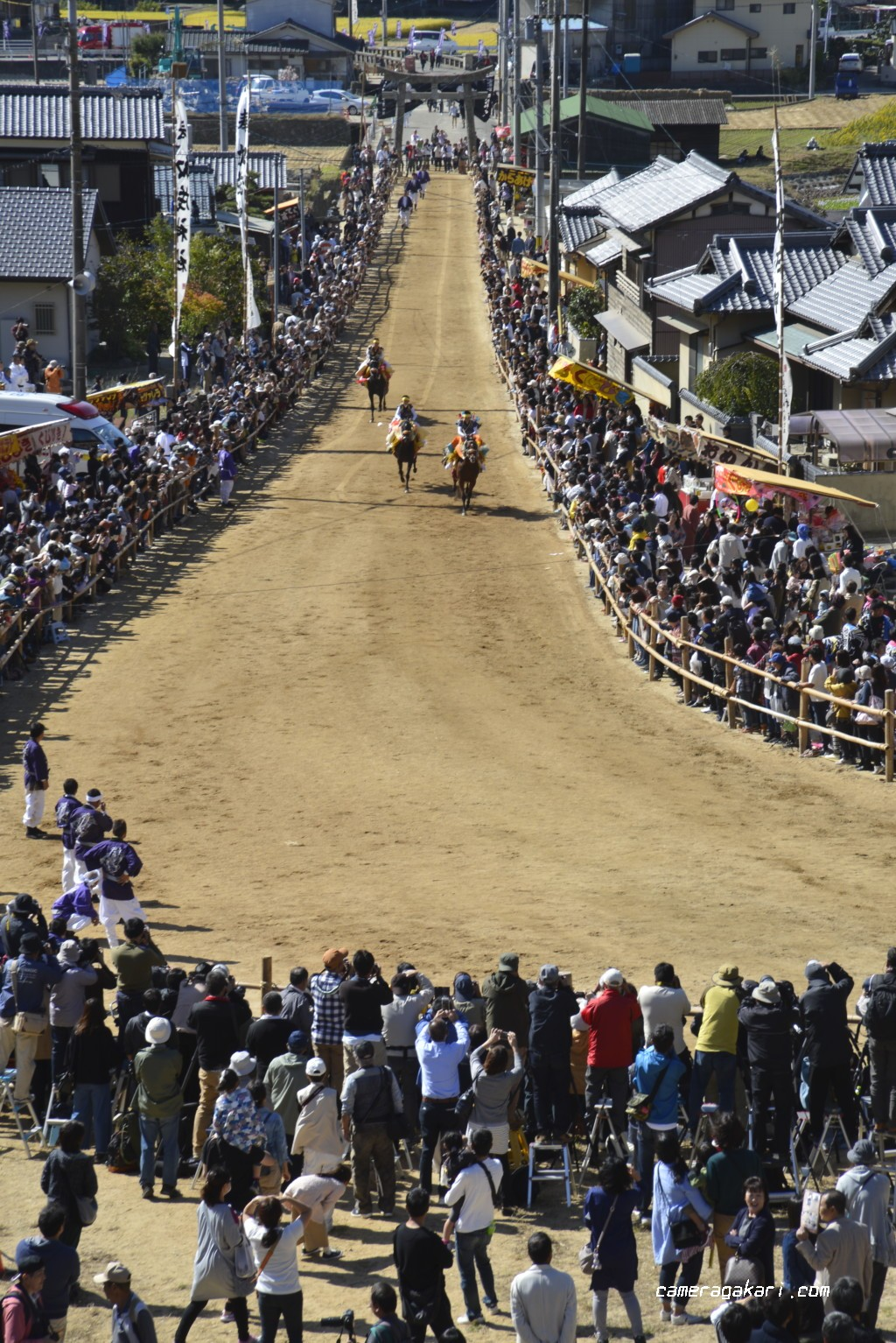お供馬の走り込み 撮影ポイント