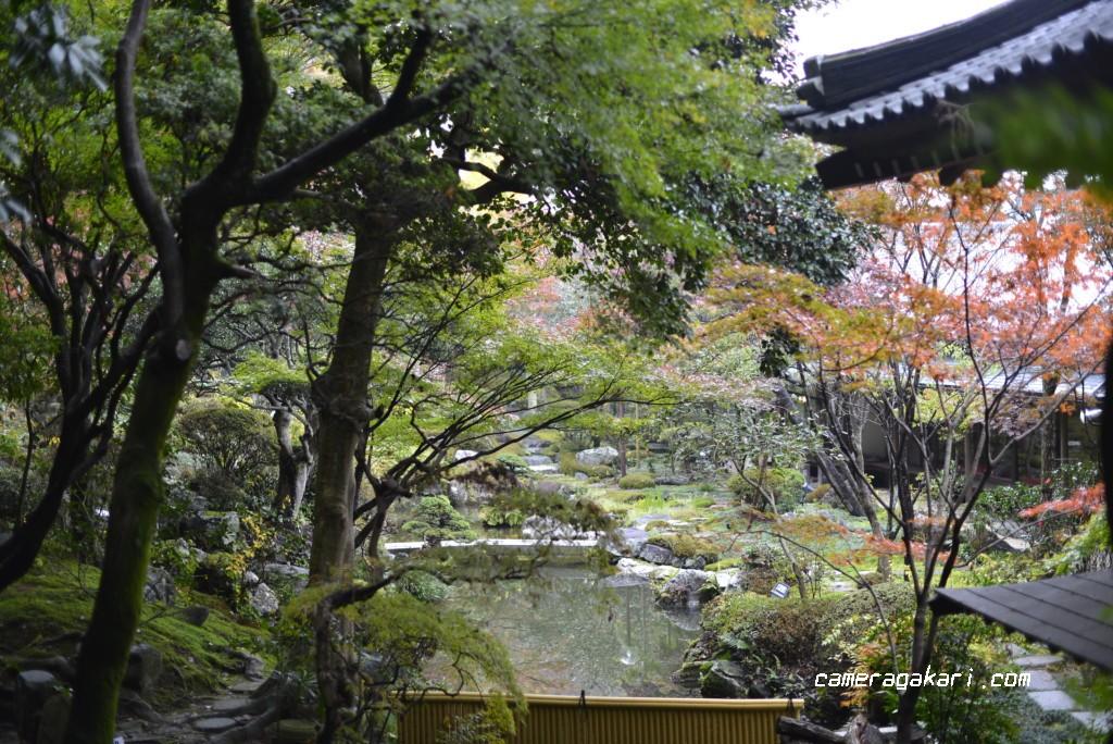 慈眼寺 庭園