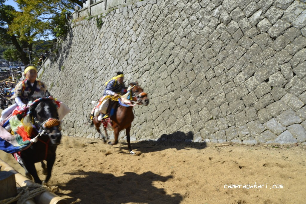 お供馬の走り込み 坂道