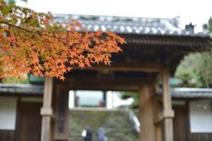 瑞応寺の紅葉