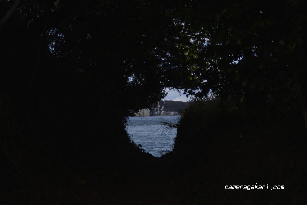 探照灯前の海岸への抜け道