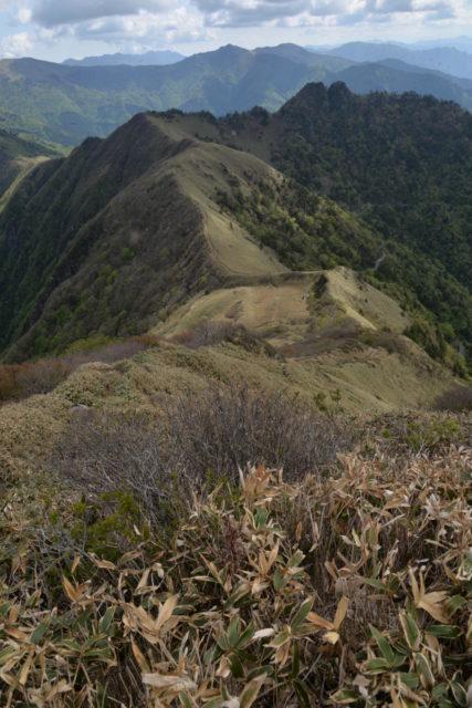 伊予富士から見た稜線の風景