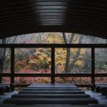 鈍川渓谷森林館の紅葉風景