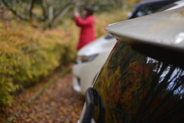 鈍川渓谷の紅葉を撮影する観光客